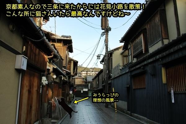 ニャポ旅33 早春の京都散策 花見小路