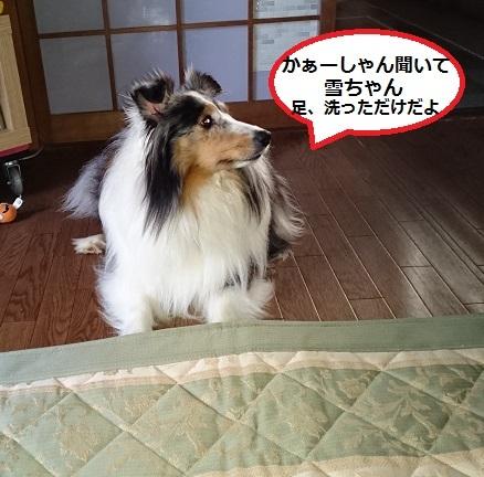 DSC_9945.jpg