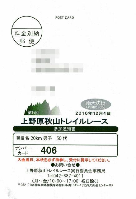 img050 (437x640)