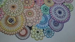 大人の塗り絵 秘密の花園 花いっぱい一部DSC_0127
