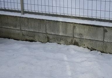 うっすらと雪DSC_0133