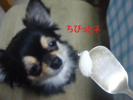 201611132143087a4.jpg