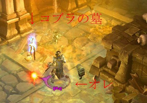 koburanohaka2.jpg