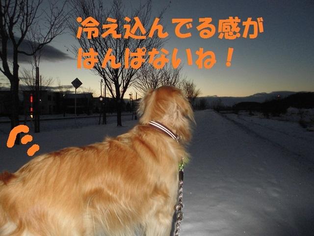 CIMG3825_P.jpg