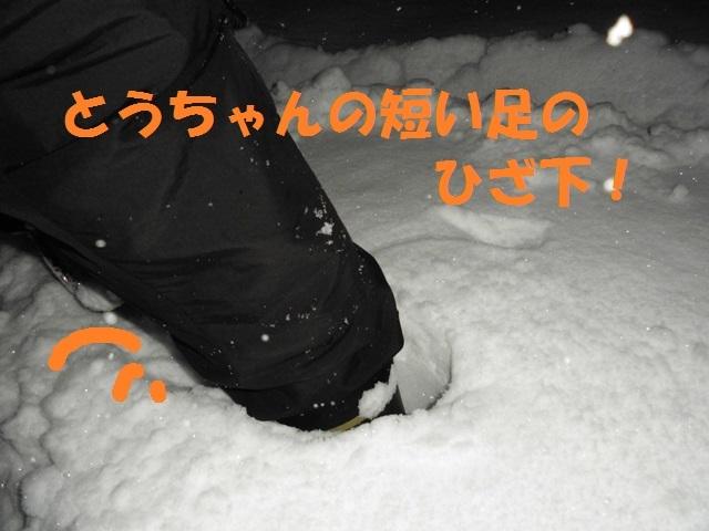 CIMG3869_P.jpg