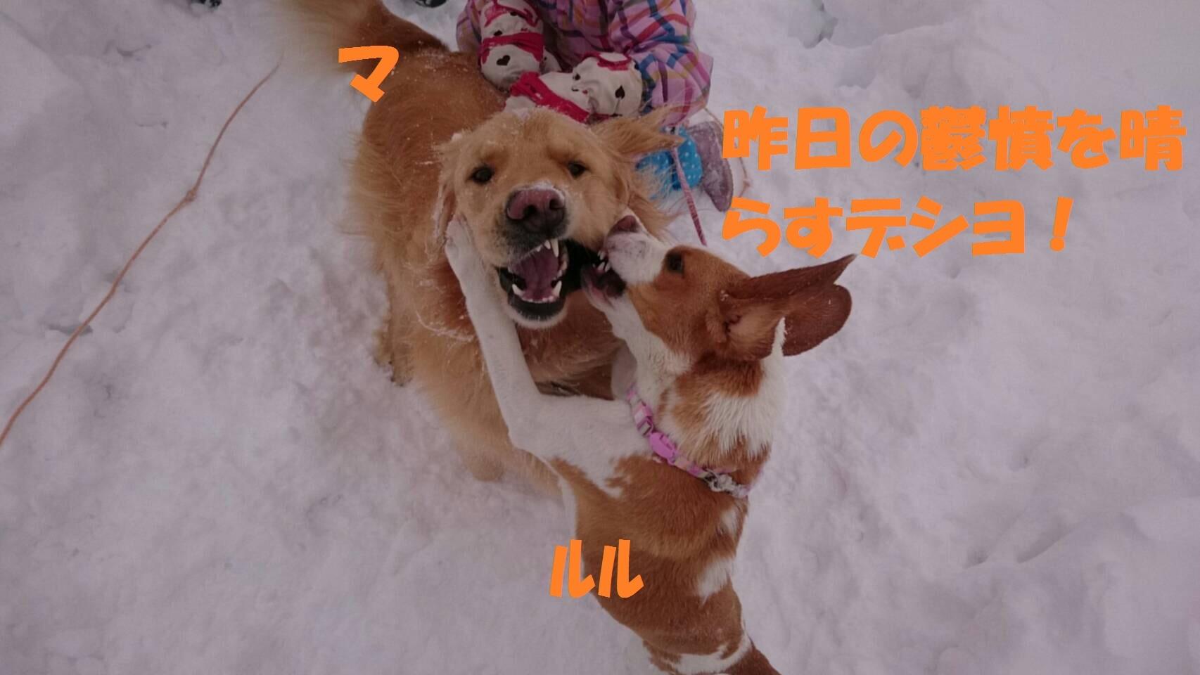 IMG_0836.jpg