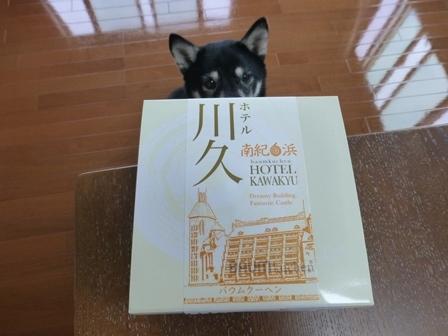 ホテル川久お土産23