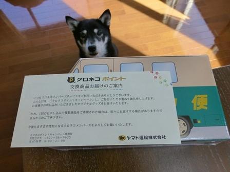 ウォークスルーお菓子1