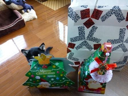 クリスマスサピニエール2