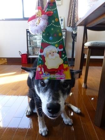 クリスマスサピニエール21