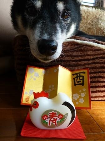 2017あけおめ1