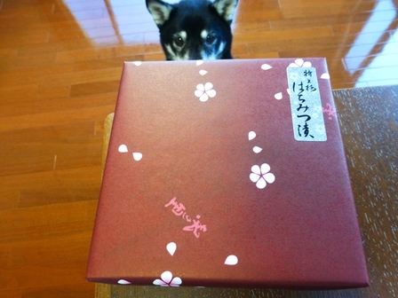 川湯温泉お土産29