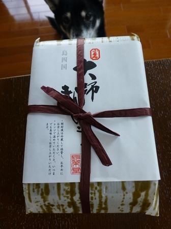 201610善通寺21