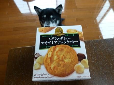 森永製菓ステラ8