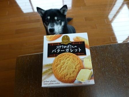 森永製菓ステラ14