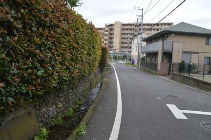 2016-10-10_26.jpg