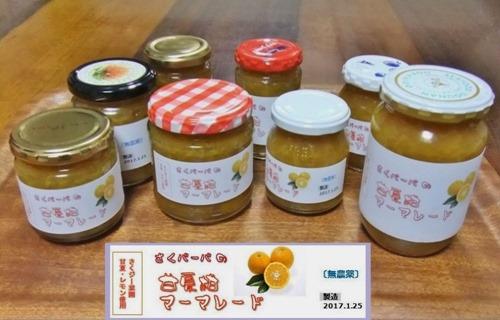 170125amanatu_marmalade