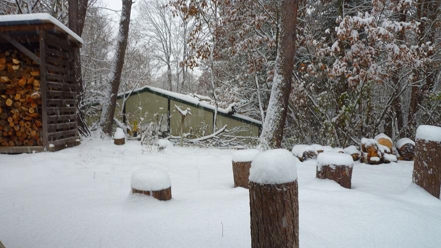 日の出 ラジオ 11月の雪