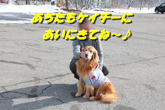20170125121746ca0.jpg