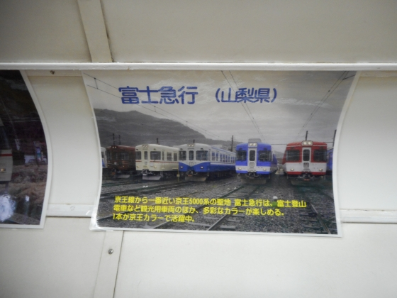 DSCN5032.jpg