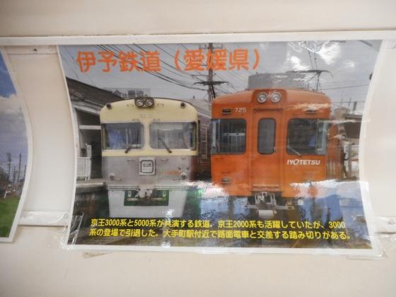 DSCN5036.jpg