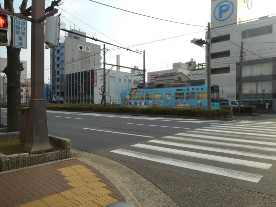 DSCN5503.jpg