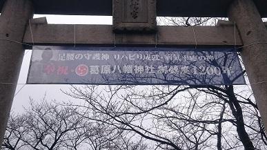 DSC_3755mini.jpg