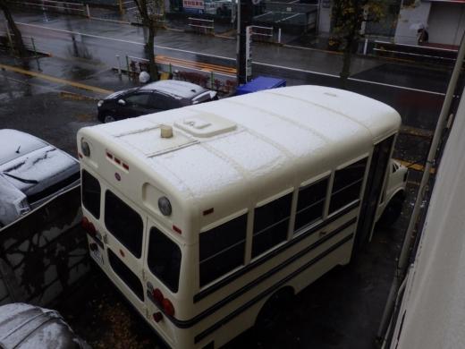 東京11月の雪 (8)