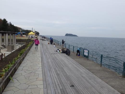 横須賀海辺つり公園 (10)