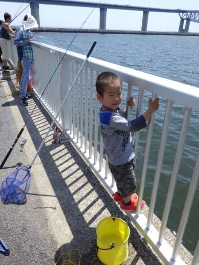 管理釣り場の柵 (1)