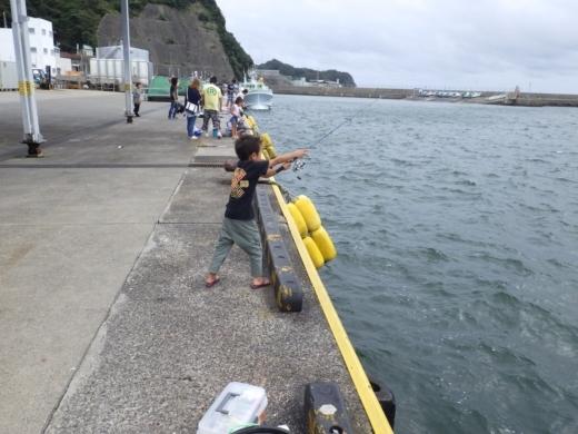 管理釣り場の柵 (6)