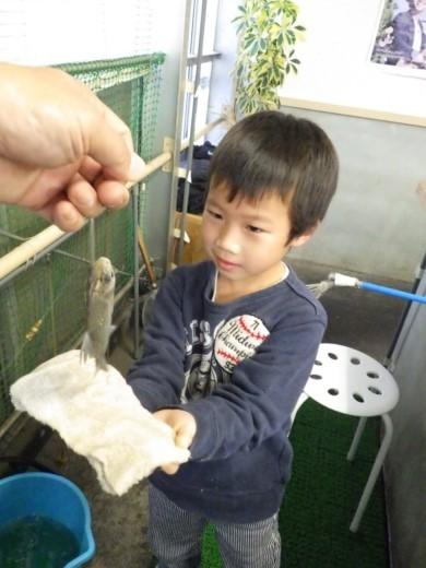 ワンコイン釣り堀 (15)