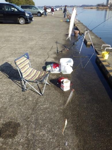 土浦港でワカサギ釣り (20)