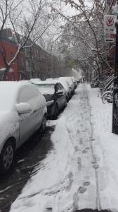 snowday01.jpg