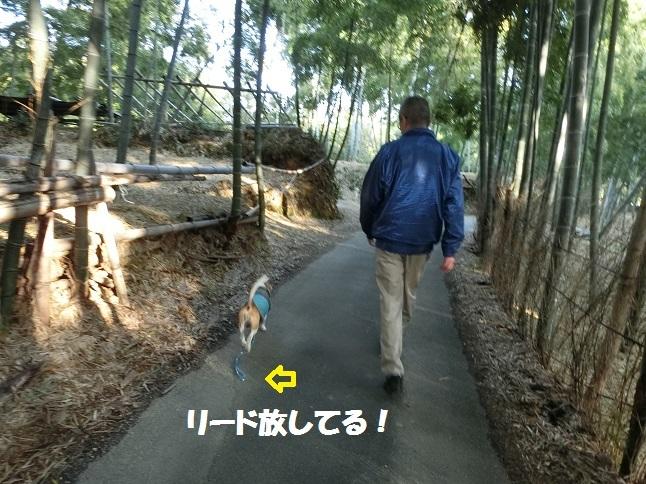 またちょっと賢くなったJIROとパパ
