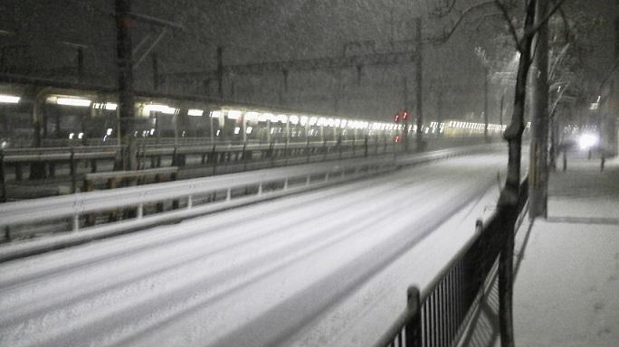 京都市内で14㎝の積雪がありました!
