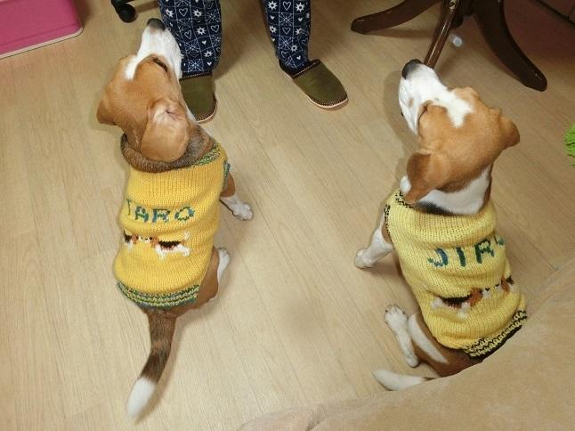 プレゼントを堪能するTARO&JIRO