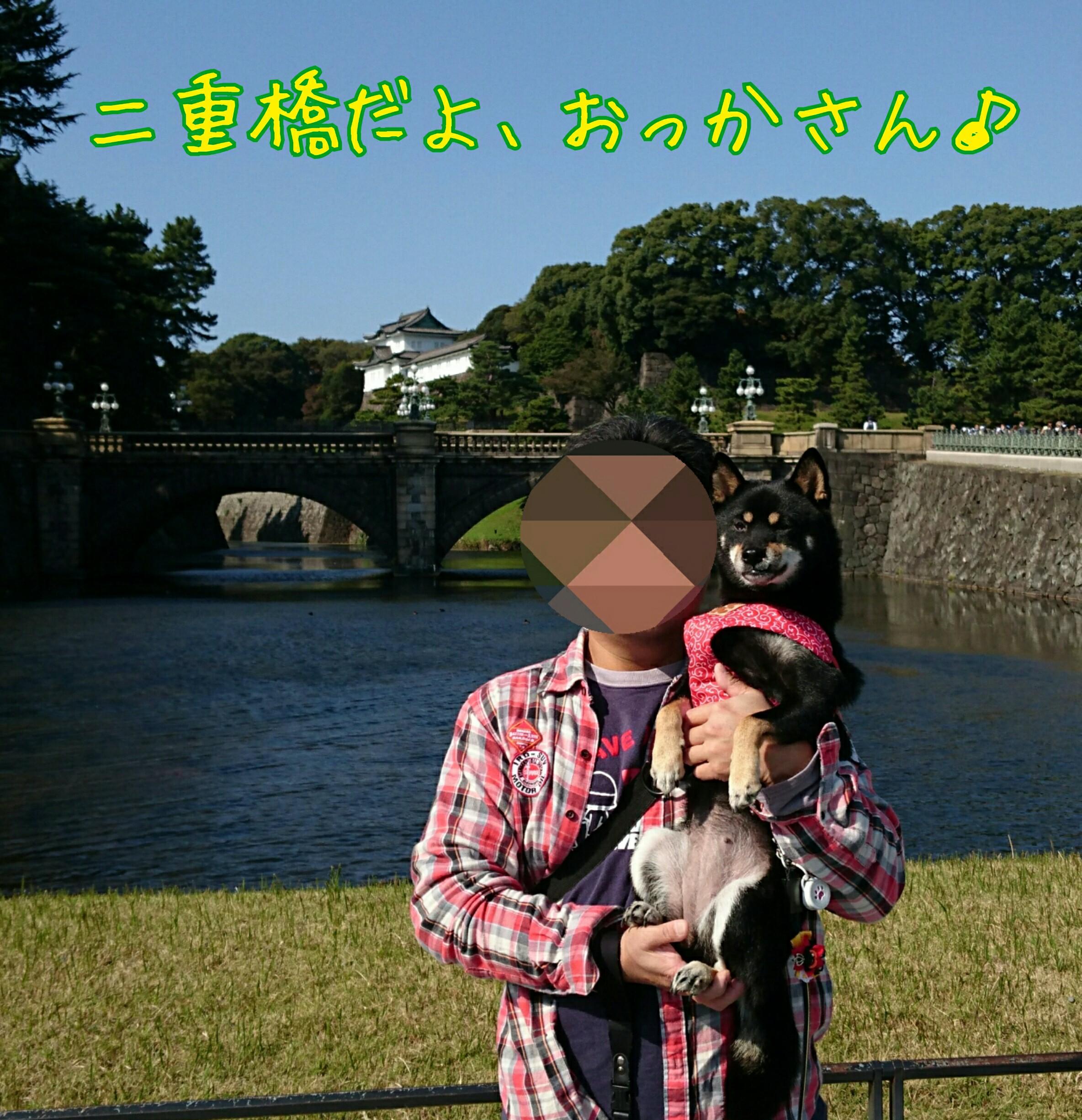 201611131046276fa.jpg