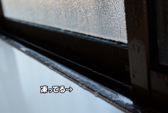 DSC00493.jpg
