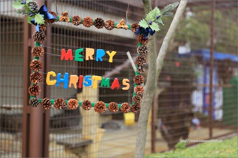 2018年12月22日11時30分~「とべ動物園のモンキータウンにサンタがやって来る」イベントが開催予定です。