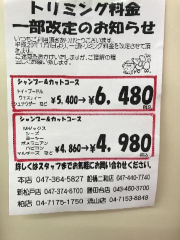 201701061607464a3.jpg