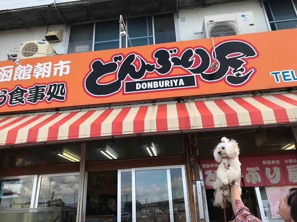 函館朝市お食事処 どんぶり屋3