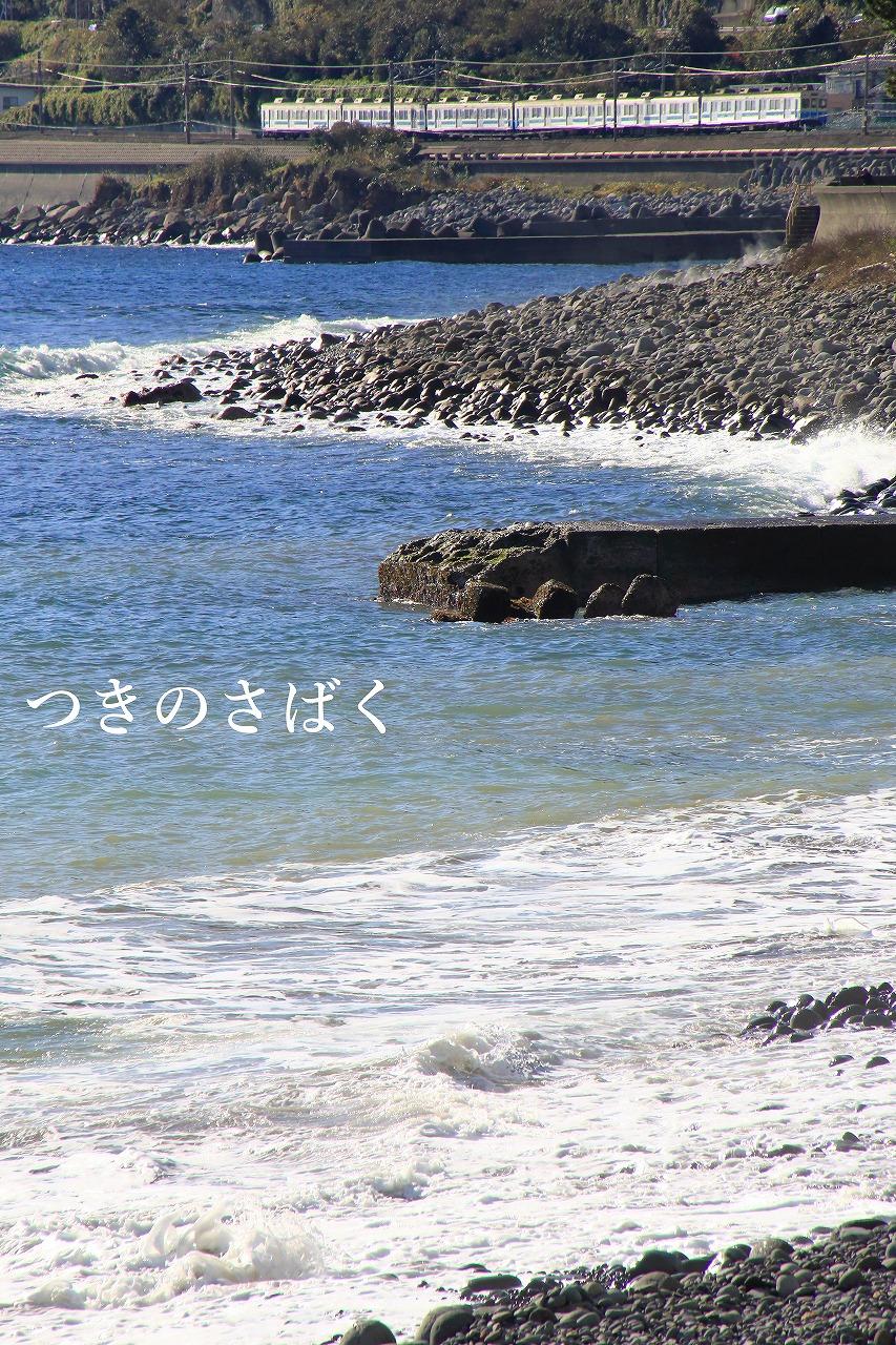 IMG_2141fauto_1.jpg