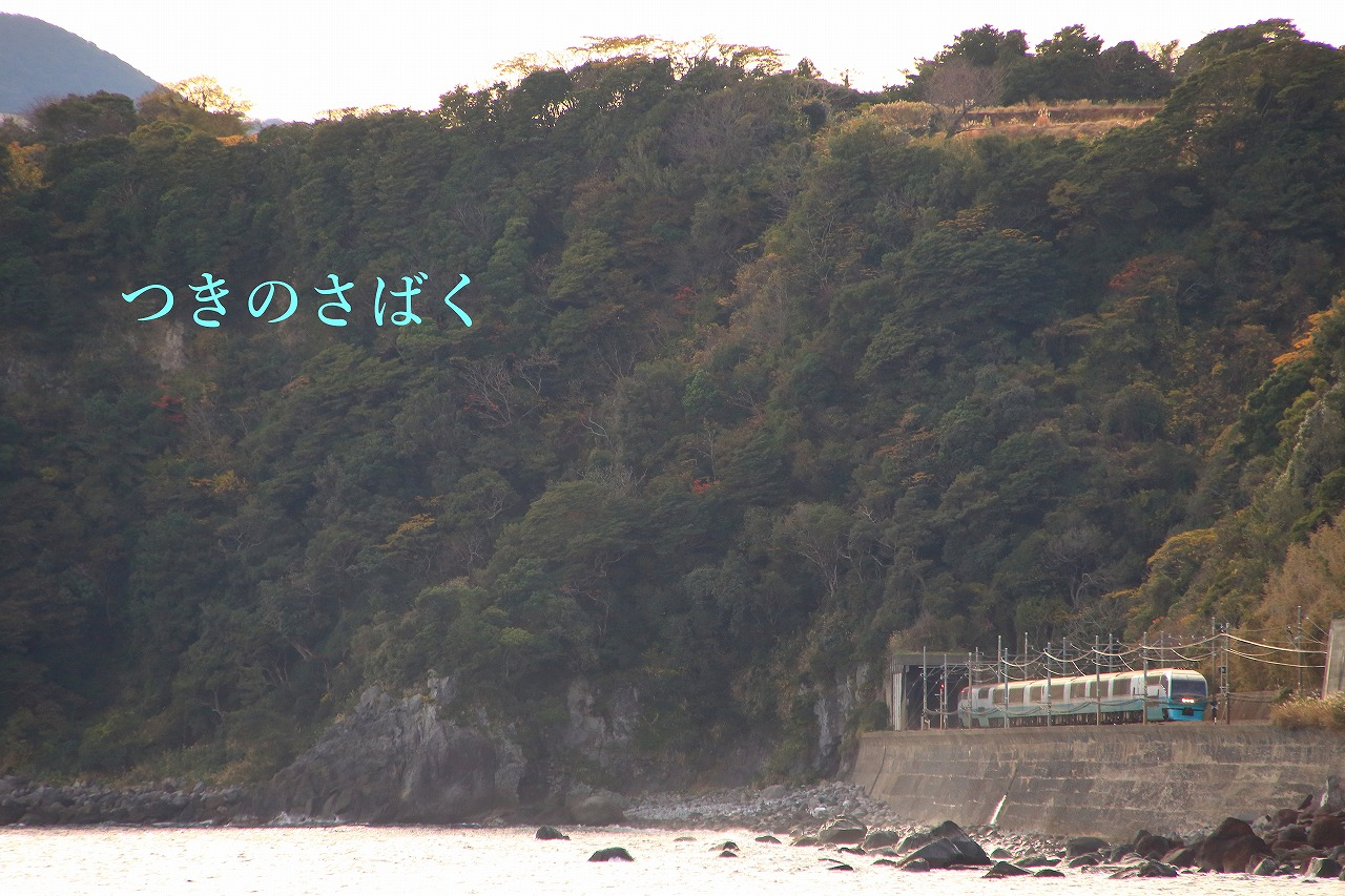 IMG_2671f6500_1.jpg