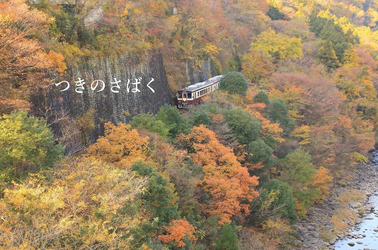 IMG_4878kakudo_1.jpg