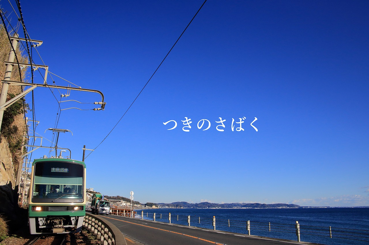 IMG_6104fauto_1.jpg