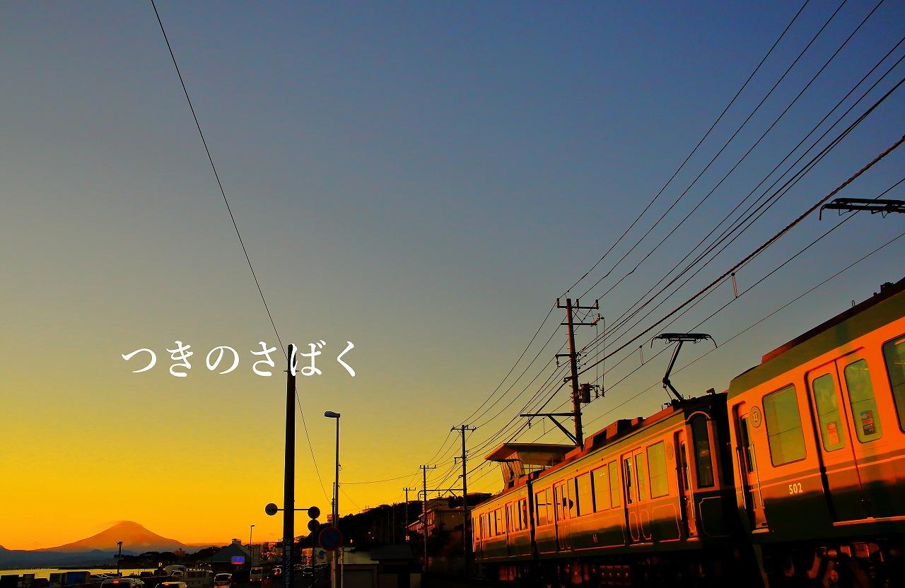 IMG_6311c9400_1.jpg