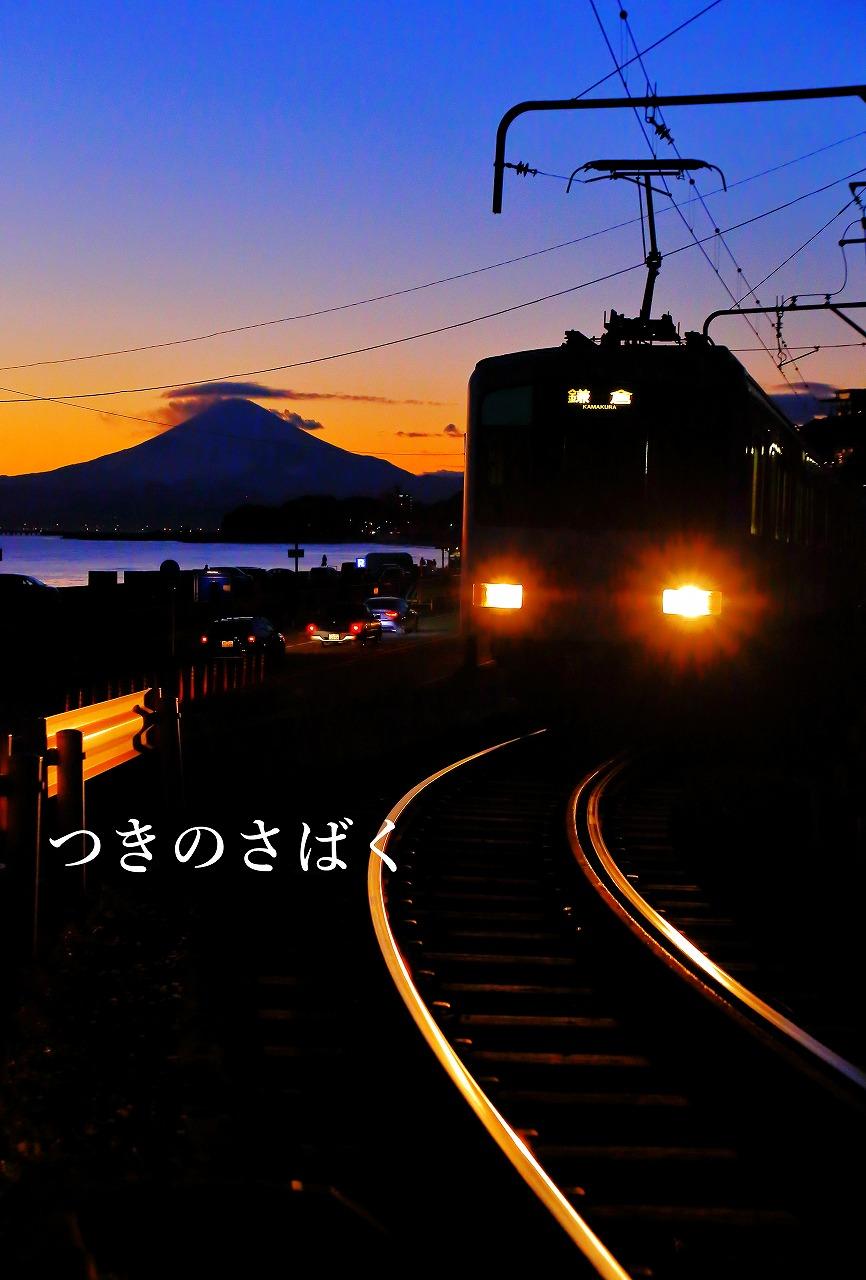 IMG_6430c4700_1.jpg
