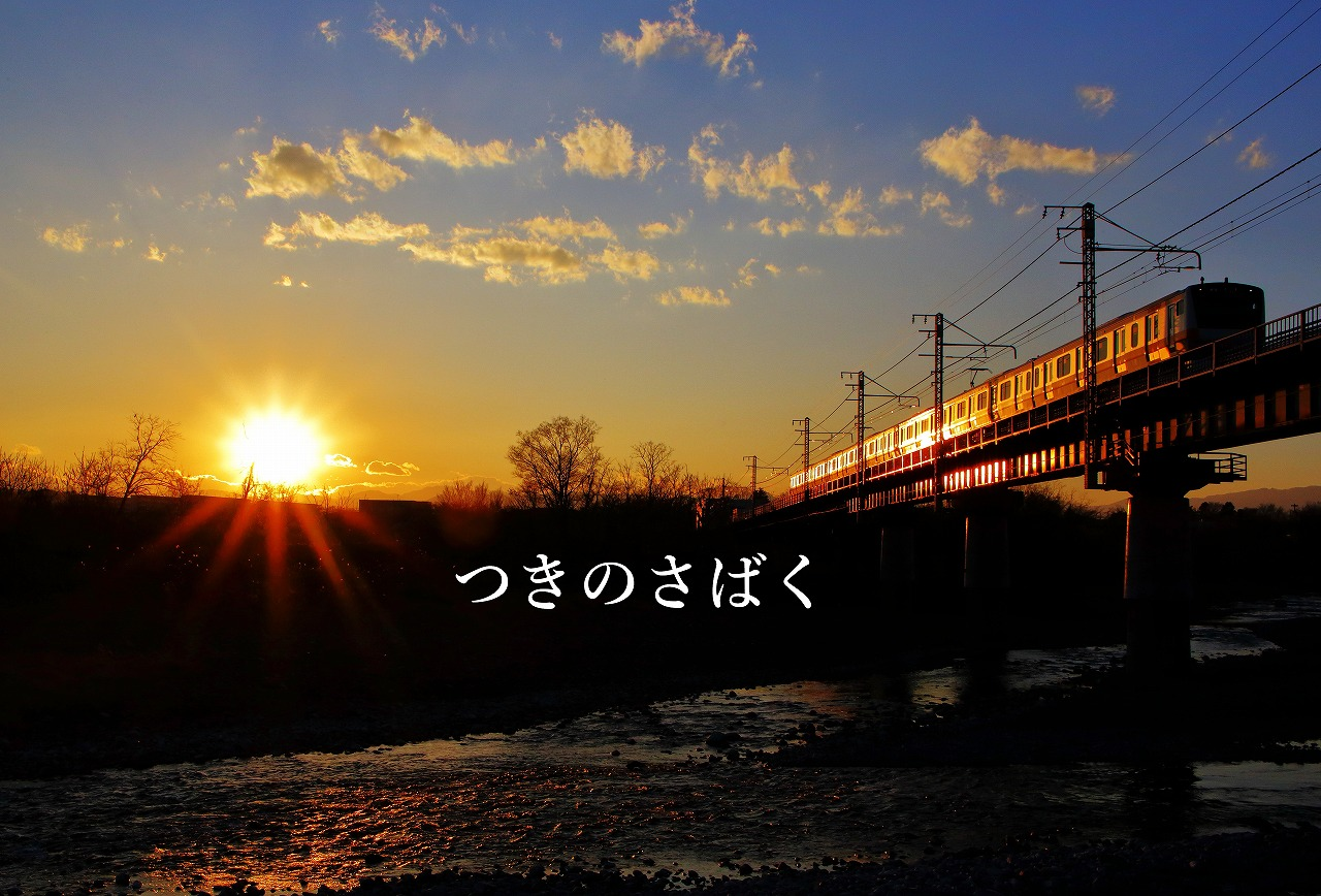 IMG_7124cauto_1.jpg