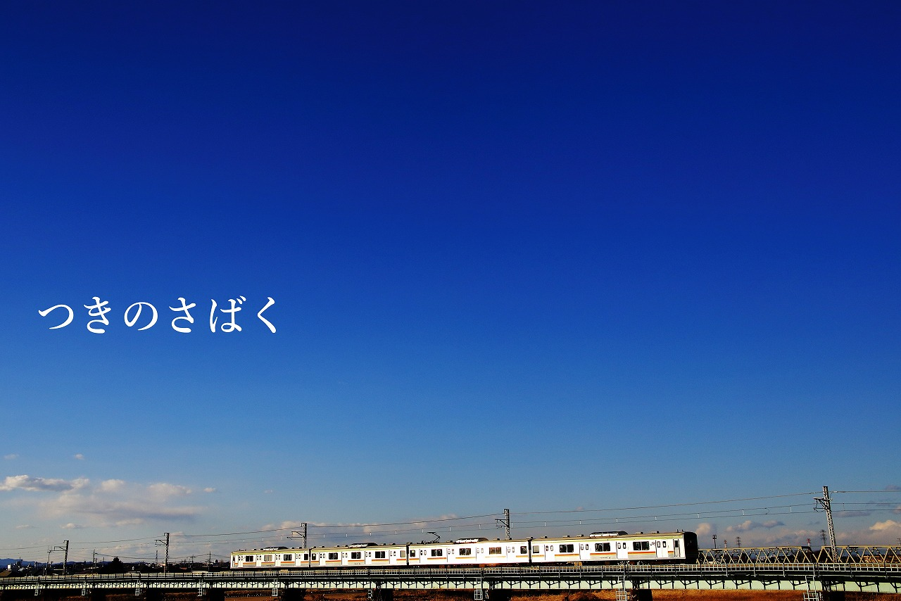 IMG_7739c6000_1.jpg